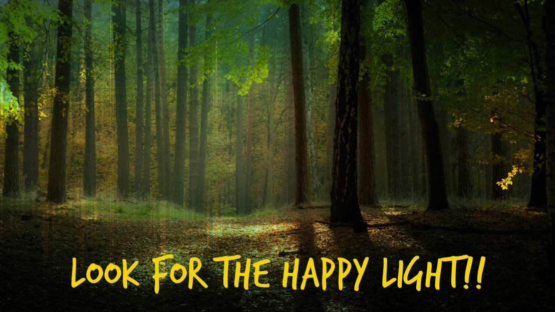 Look for the Happy Light!!